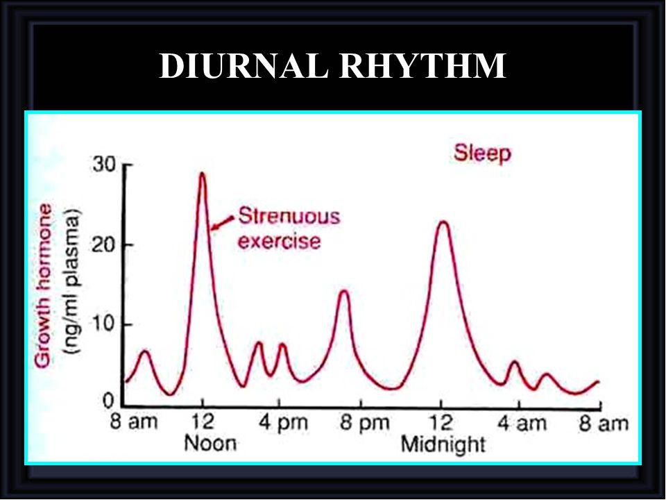 DIURNAL RHYTHM