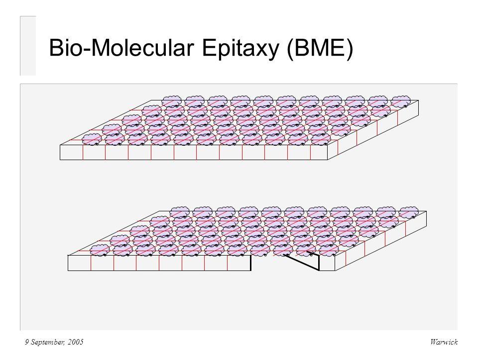 9 September, 2005Warwick Bio-Molecular Epitaxy (BME)
