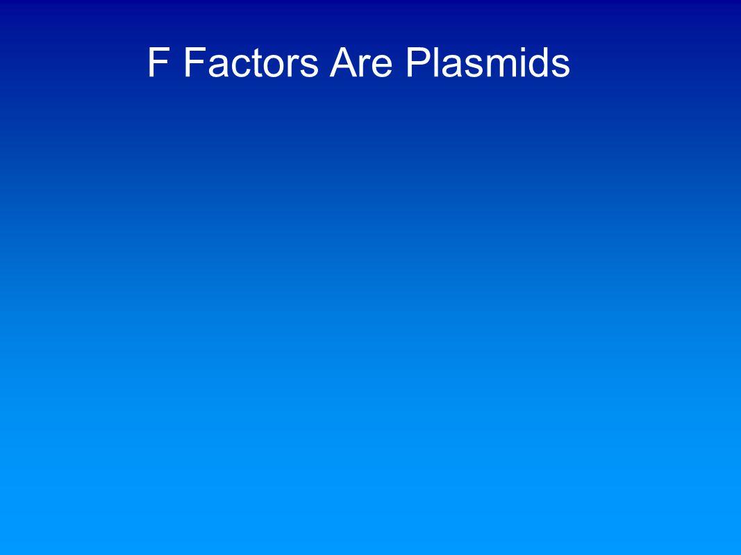 F Factors Are Plasmids