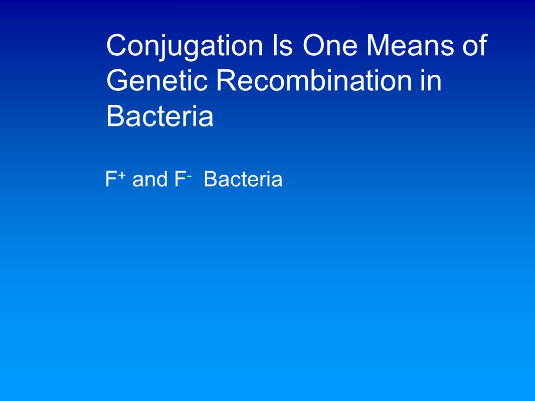 Conjugation Is One Means of Genetic Recombination in Bacteria Recombination in F + X F - Matings: A Reexamination
