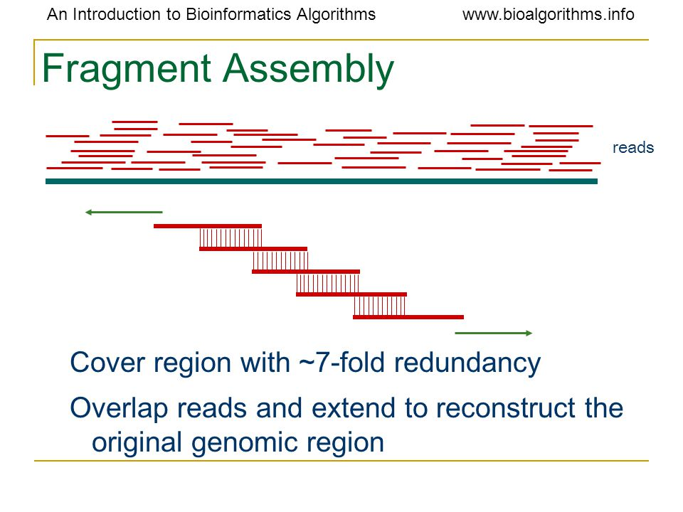 An Introduction to Bioinformatics Algorithmswww.bioalgorithms.info Fragment Assembly Cover region with ~7-fold redundancy Overlap reads and extend to reconstruct the original genomic region reads
