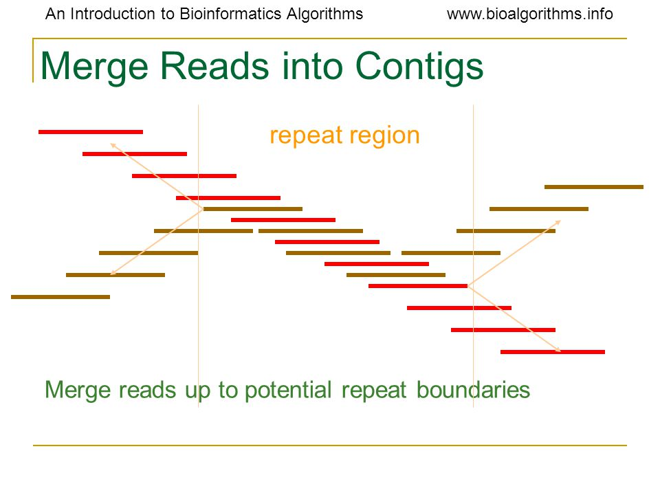 An Introduction to Bioinformatics Algorithmswww.bioalgorithms.info Merge Reads into Contigs Merge reads up to potential repeat boundaries repeat region