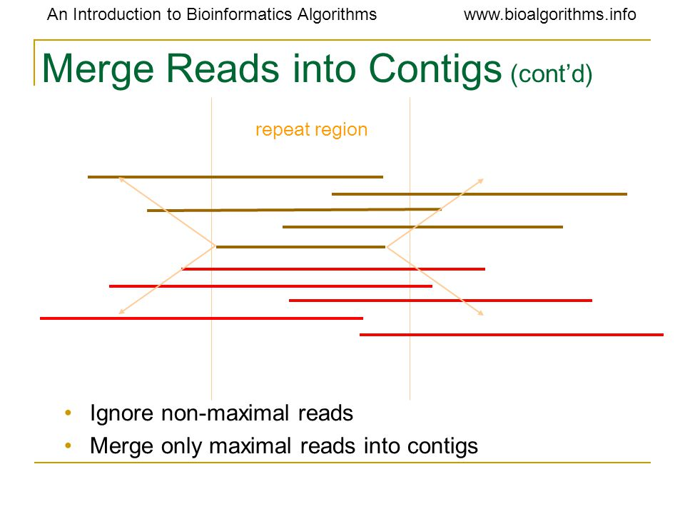 An Introduction to Bioinformatics Algorithmswww.bioalgorithms.info Merge Reads into Contigs (cont'd) Ignore non-maximal reads Merge only maximal reads