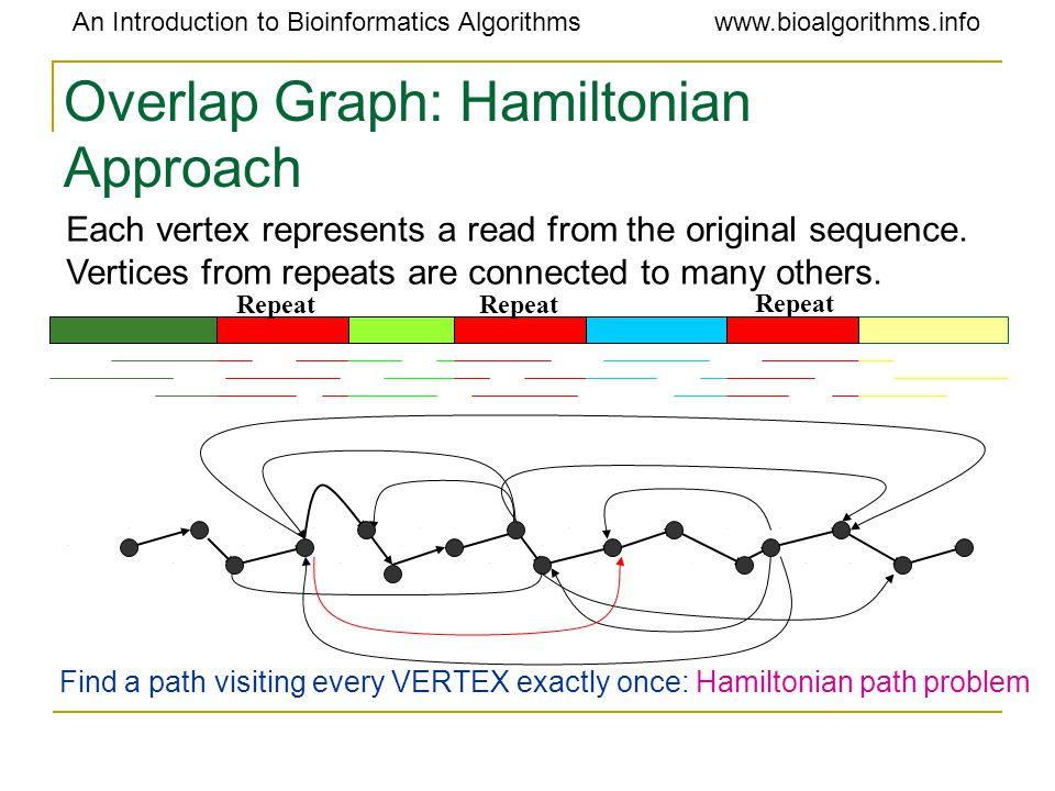 An Introduction to Bioinformatics Algorithmswww.bioalgorithms.info Overlap Graph: Hamiltonian Approach Repeat Find a path visiting every VERTEX exactly once: Hamiltonian path problem Each vertex represents a read from the original sequence.