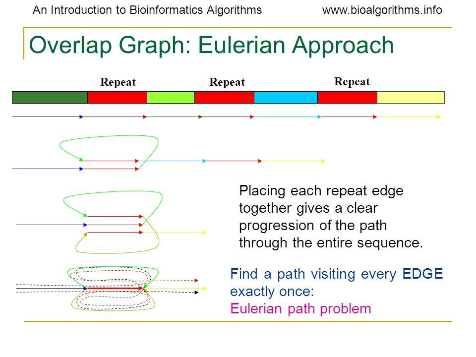 An Introduction to Bioinformatics Algorithmswww.bioalgorithms.info Overlap Graph: Eulerian Approach Repeat Find a path visiting every EDGE exactly onc