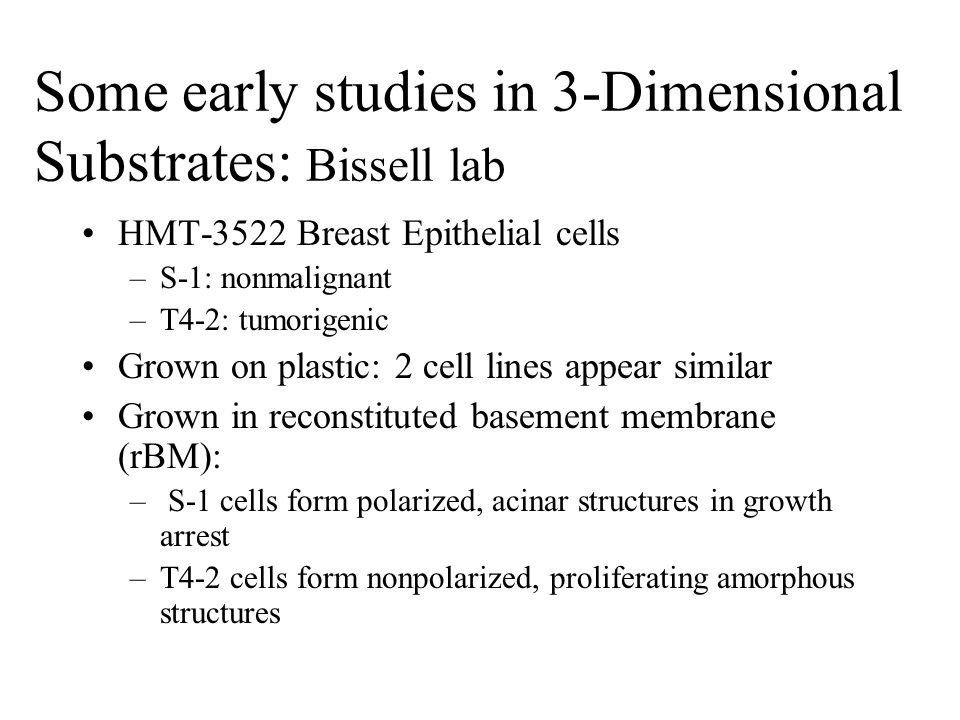 Some early studies in 3-Dimensional Substrates: Bissell lab HMT-3522 Breast Epithelial cells –S-1: nonmalignant –T4-2: tumorigenic Grown on plastic: 2 cell lines appear similar Grown in reconstituted basement membrane (rBM): – S-1 cells form polarized, acinar structures in growth arrest –T4-2 cells form nonpolarized, proliferating amorphous structures
