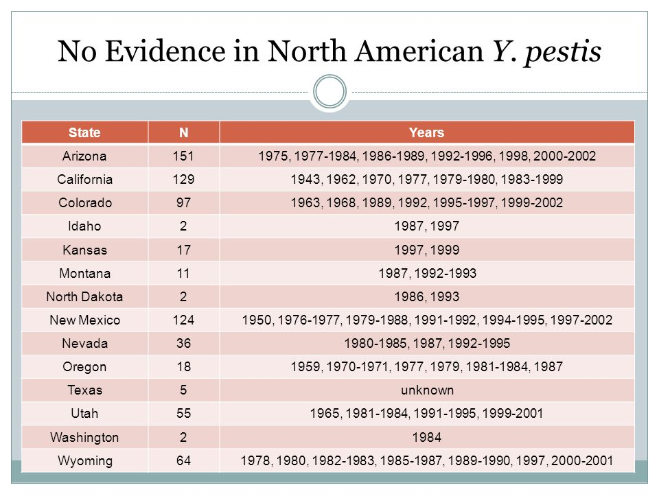 No Evidence in North American Y.