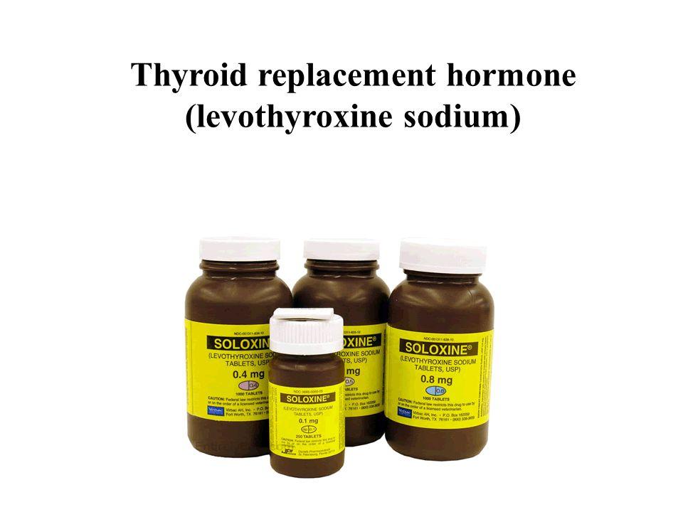 Thyroid replacement hormone (levothyroxine sodium)