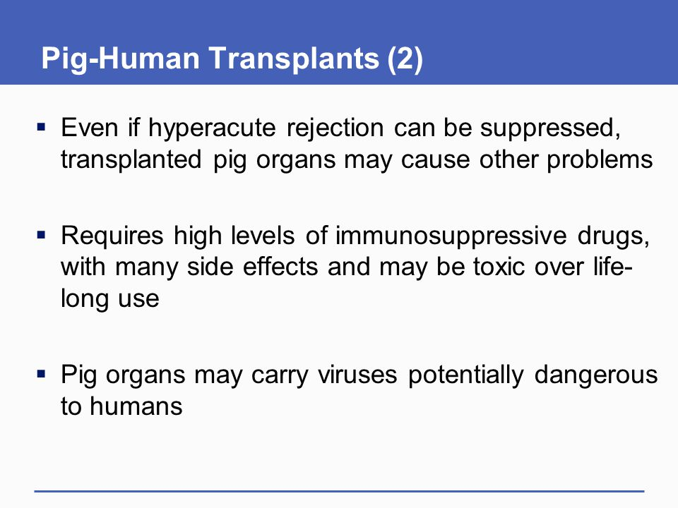 Pig-Human Transplants (2)  Even if hyperacute rejection can be suppressed, transplanted pig organs may cause other problems  Requires high levels of