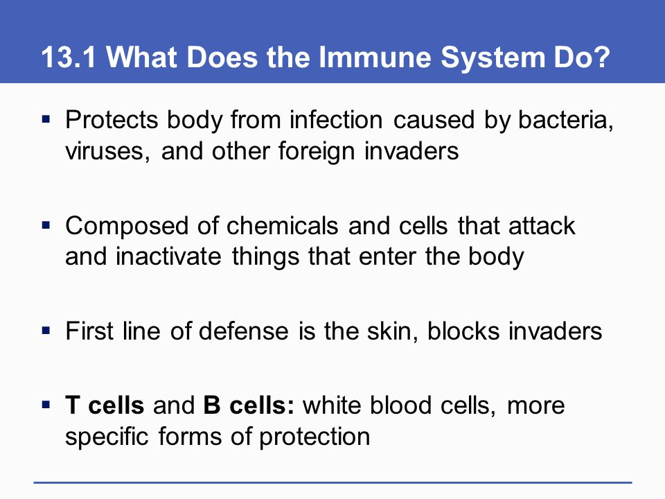13.1 What Does the Immune System Do?  Protects body from infection caused by bacteria, viruses, and other foreign invaders  Composed of chemicals an