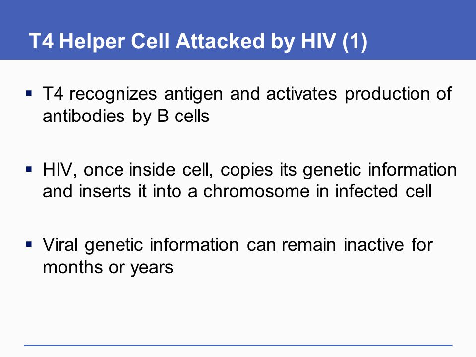 T4 Helper Cell Attacked by HIV (1)  T4 recognizes antigen and activates production of antibodies by B cells  HIV, once inside cell, copies its genet