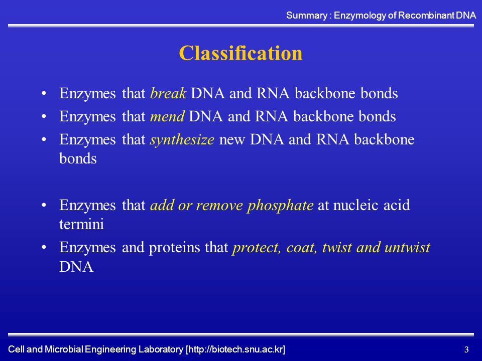 Cell and Microbial Engineering Laboratory [http://biotech.snu.ac.kr] Summary : Enzymology of Recombinant DNA 4 Enzymes that break DNA and RNA backbone bonds Endonucleases –Restriction enzymes : Three types –Deoxyrebinucleases (DNase) DNase I and Mung Bean Nuclease –Ribonucleases (RNase) RNase T1, U2, A, CL3, PhyM, B, H Exonucleases –Exonuclease III –Exonuclease VII –Lambda Exonuclease –T7 Gene 6 Exonuclease –Venom phosphodiesterase –Spleen phosphodiesterase