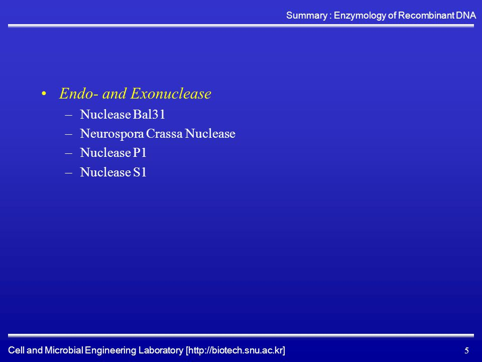 Cell and Microbial Engineering Laboratory [http://biotech.snu.ac.kr] Summary : Enzymology of Recombinant DNA 5 Endo- and Exonuclease –Nuclease Bal31 –Neurospora Crassa Nuclease –Nuclease P1 –Nuclease S1