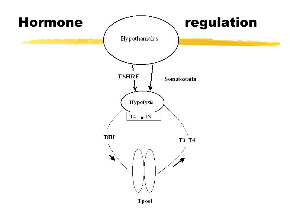 Hormone regulation