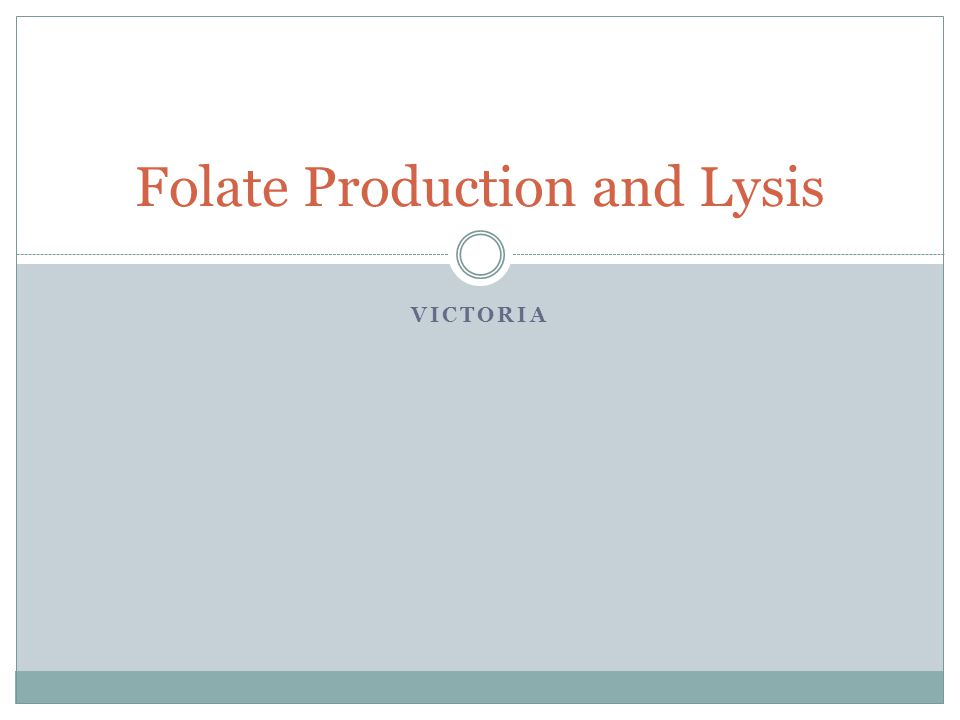 VICTORIA Folate Production and Lysis