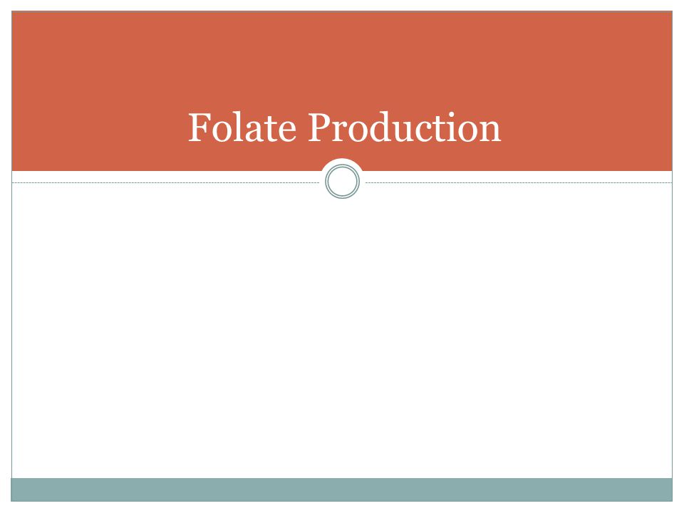 Folate Production