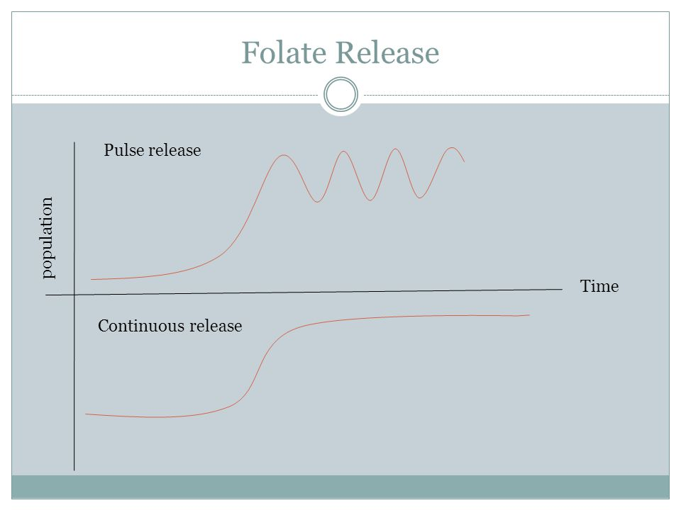 Folate Release Time population Pulse release Continuous release