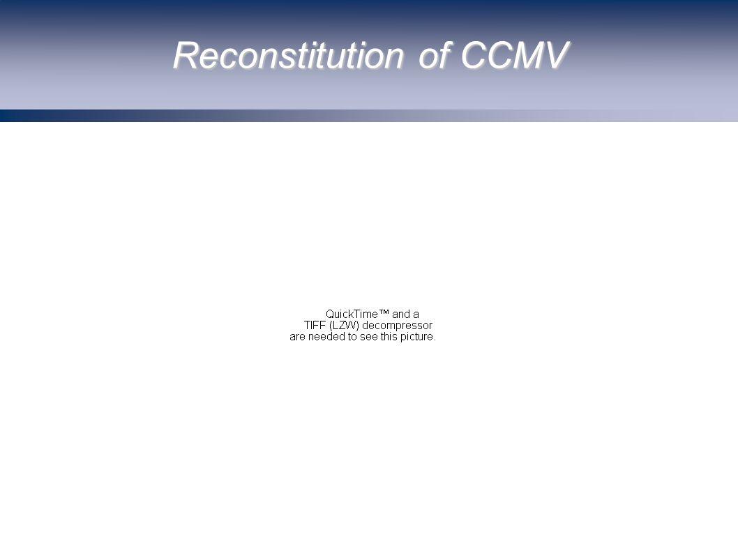 Reconstitution of CCMV