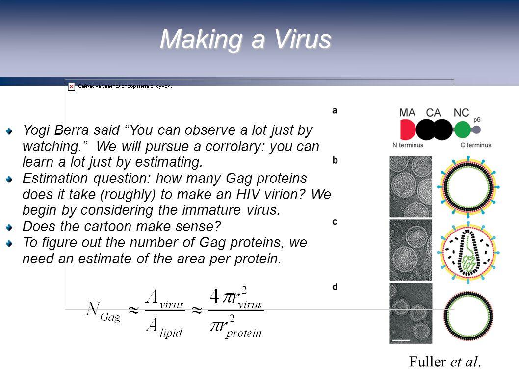 Making a Virus Fuller et al.