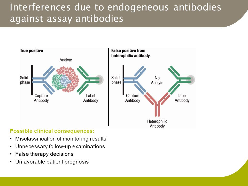 Interferences due to endogeneous antibodies against assay antibodies Possible clinical consequences: Misclassification of monitoring results Unnecessa