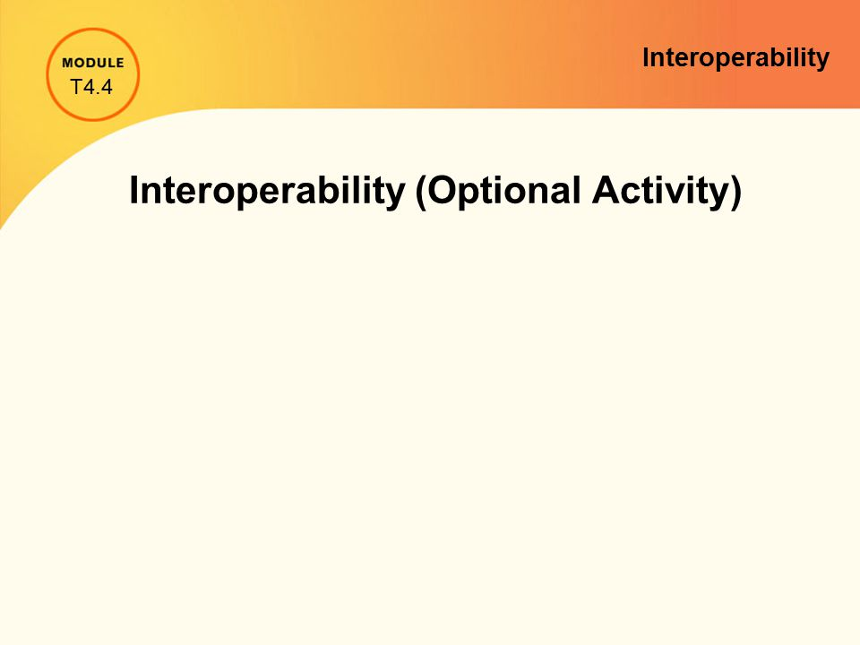 Interoperability (Optional Activity) T4.4 Interoperability