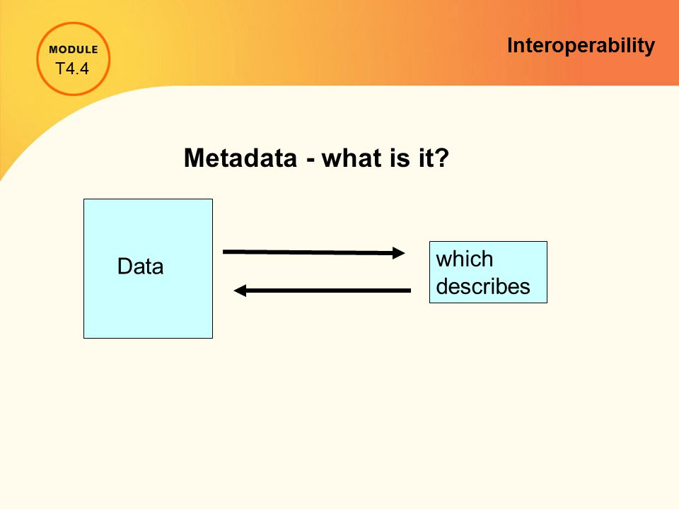 Metadata - what is it? Data which describes T4.4 Interoperability