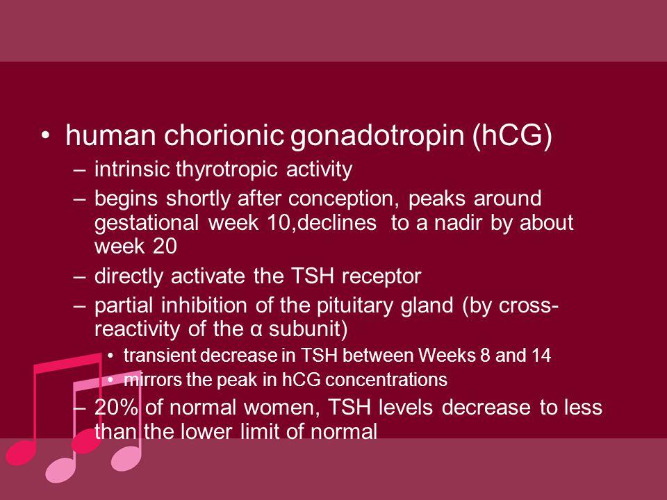 Trophoblastic hyperthyroidism hydatidiform mole (molar pregnancy) & choriocarcinoma.