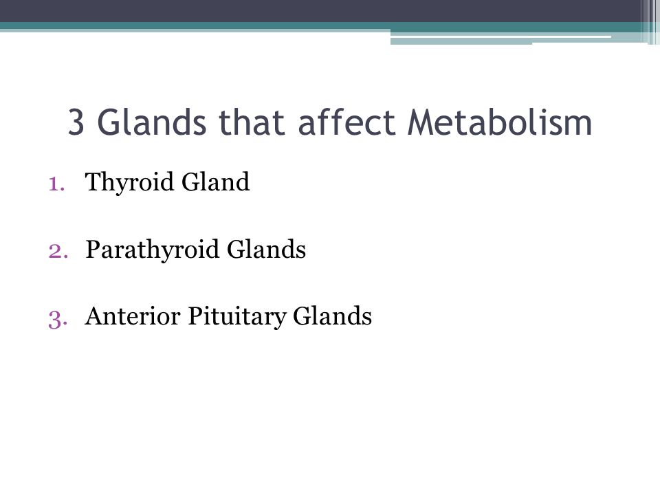 3 Glands that affect Metabolism 1.Thyroid Gland 2.Parathyroid Glands 3.Anterior Pituitary Glands