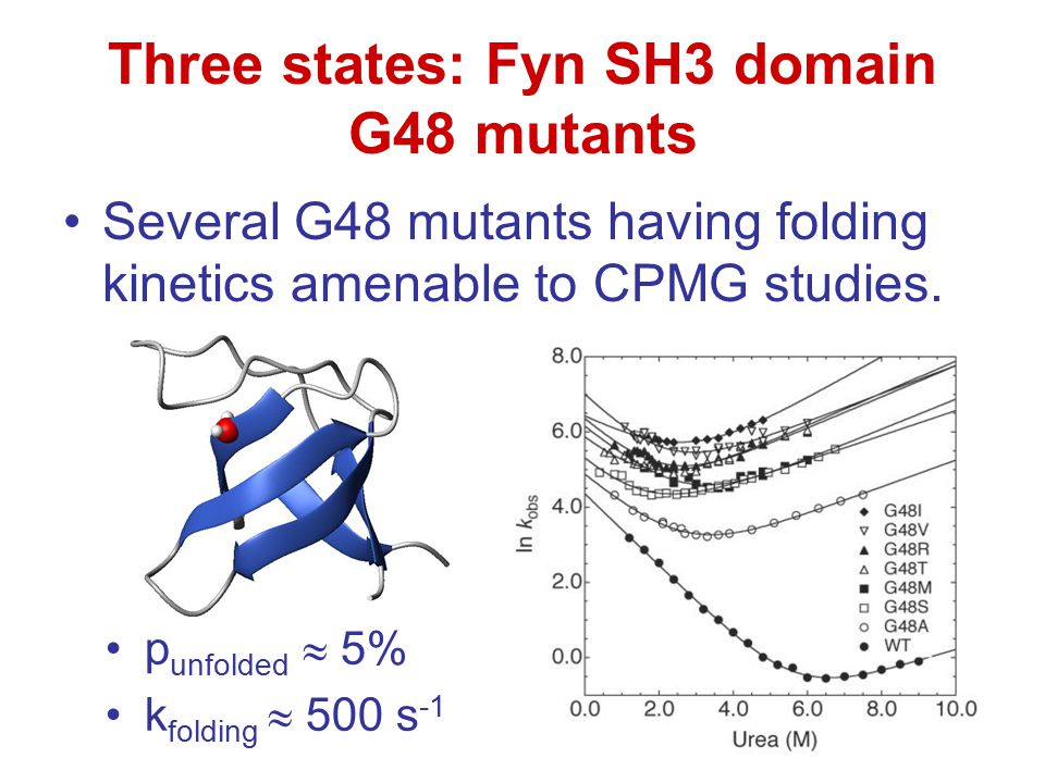 Three states: Fyn SH3 domain G48 mutants Several G48 mutants having folding kinetics amenable to CPMG studies. p unfolded  5% k folding  500 s -1