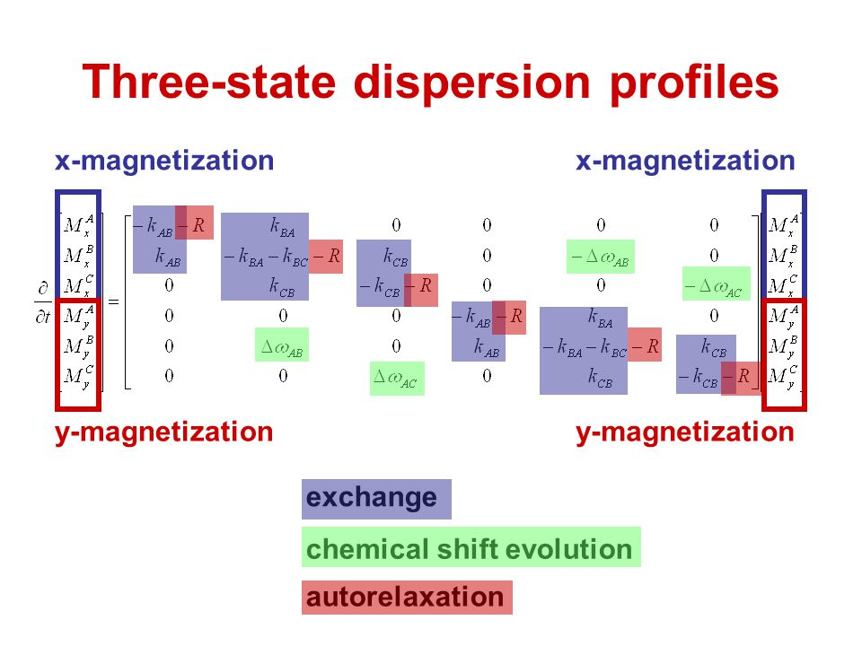 Three-state dispersion profiles x-magnetization y-magnetization x-magnetization y-magnetization exchange chemical shift evolution autorelaxation