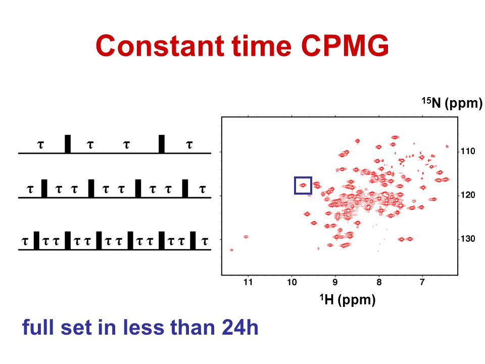 15 N (ppm) 1 H (ppm) Constant time CPMG full set in less than 24h