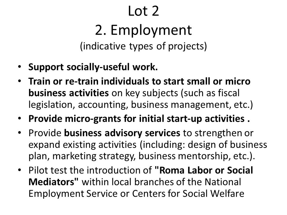 Lot 2 2. Employment (indicative types of projects) Support socially-useful work. Train or re-train individuals to start small or micro business activi