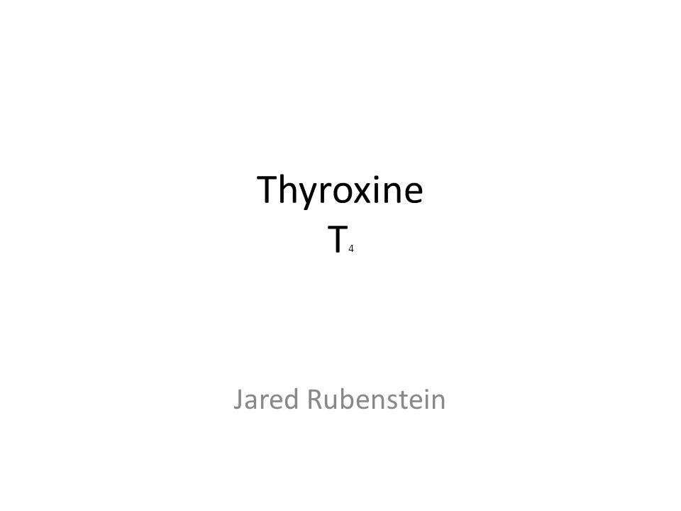 Thyroxine T 4 Jared Rubenstein