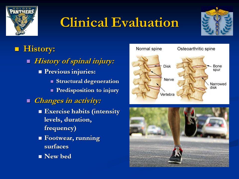History: History: History of spinal injury: History of spinal injury: Previous injuries: Previous injuries: Structural degeneration Structural degener