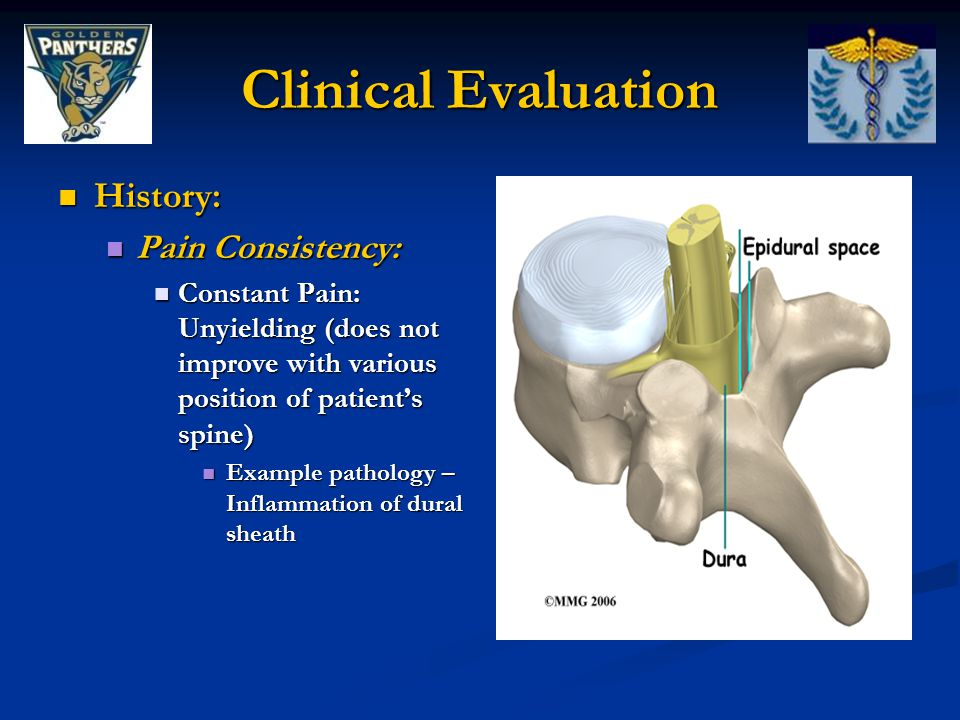 History: History: Pain Consistency: Pain Consistency: Constant Pain: Unyielding (does not improve with various position of patient's spine) Constant P