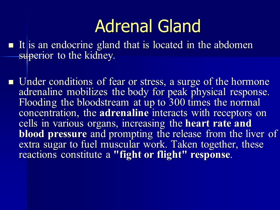 Adrenal Gland It is an endocrine gland that is located in the abdomen superior to the kidney. It is an endocrine gland that is located in the abdomen