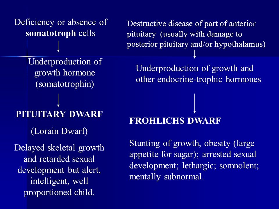 Deficiency or absence of somatotroph cells Underproduction of growth hormone (somatotrophin) PITUITARY DWARF (Lorain Dwarf) Delayed skeletal growth an