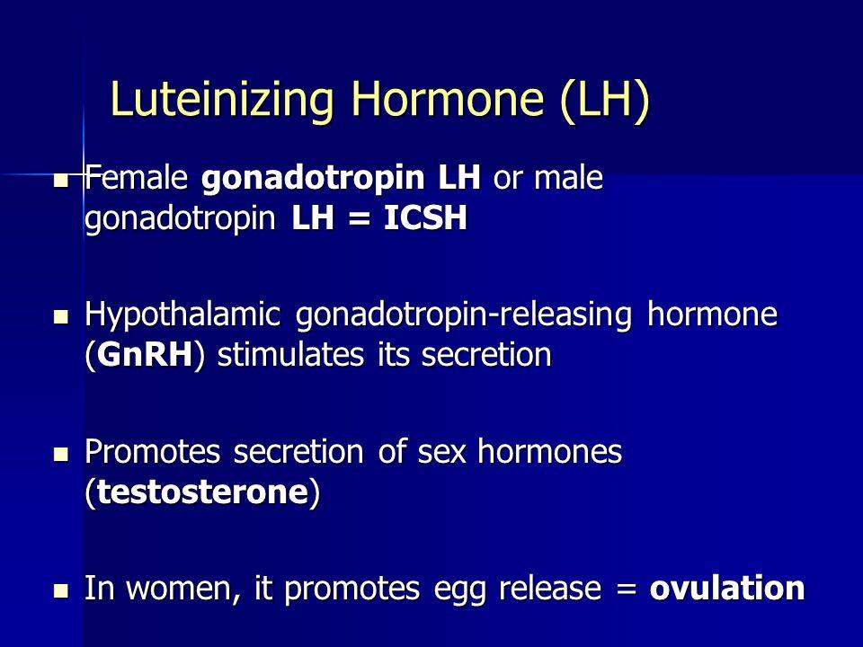 Luteinizing Hormone (LH) Female gonadotropin LH or male gonadotropin LH = ICSH Female gonadotropin LH or male gonadotropin LH = ICSH Hypothalamic gonadotropin-releasing hormone (GnRH) stimulates its secretion Hypothalamic gonadotropin-releasing hormone (GnRH) stimulates its secretion Promotes secretion of sex hormones (testosterone) Promotes secretion of sex hormones (testosterone) In women, it promotes egg release = ovulation In women, it promotes egg release = ovulation