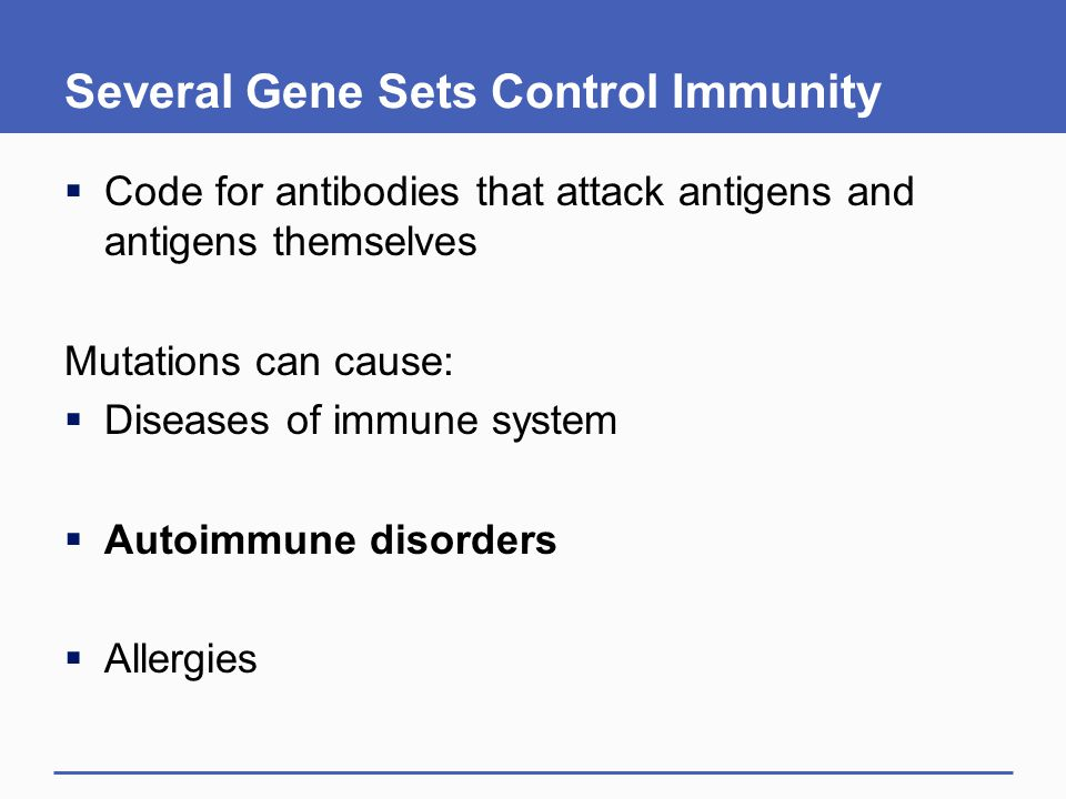 Several Gene Sets Control Immunity  Code for antibodies that attack antigens and antigens themselves Mutations can cause:  Diseases of immune system  Autoimmune disorders  Allergies