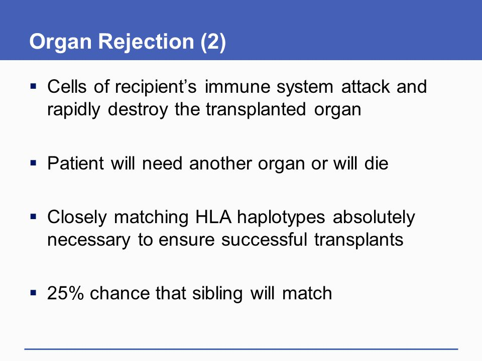 Organ Rejection (2)  Cells of recipient's immune system attack and rapidly destroy the transplanted organ  Patient will need another organ or will die  Closely matching HLA haplotypes absolutely necessary to ensure successful transplants  25% chance that sibling will match