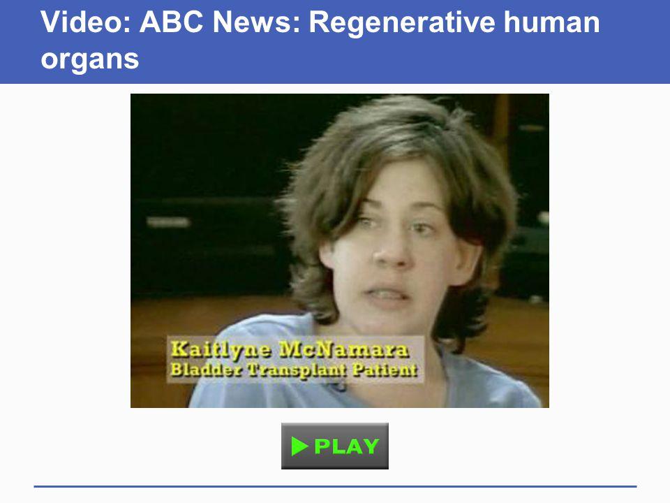 Video: ABC News: Regenerative human organs
