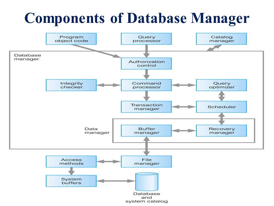Components of Database Manager