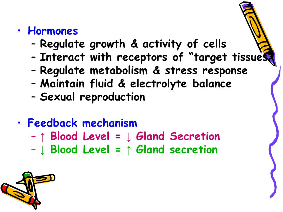 "Hormones –Regulate growth & activity of cells –Interact with receptors of ""target tissues"" –Regulate metabolism & stress response –Maintain fluid & el"