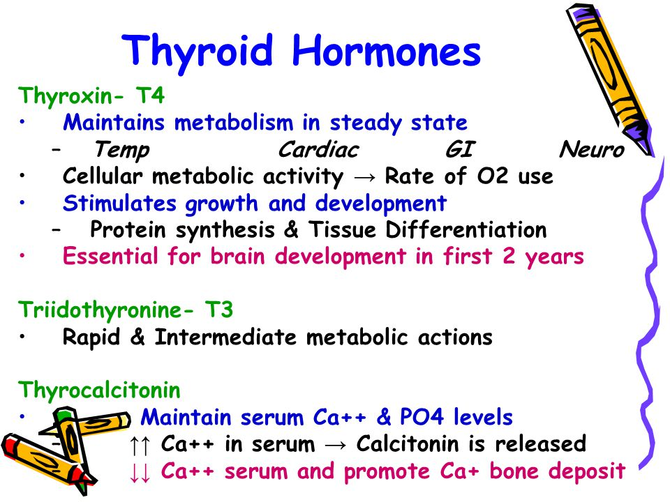 Thyroid Hormones Thyroxin- T4 Maintains metabolism in steady state –Temp Cardiac GI Neuro Cellular metabolic activity → Rate of O2 use Stimulates grow