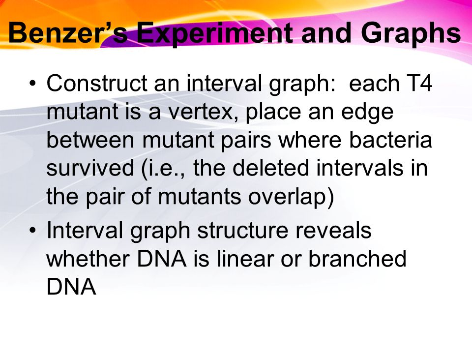 Benzer's Experiment and Graphs Construct an interval graph: each T4 mutant is a vertex, place an edge between mutant pairs where bacteria survived (i.e., the deleted intervals in the pair of mutants overlap) Interval graph structure reveals whether DNA is linear or branched DNA