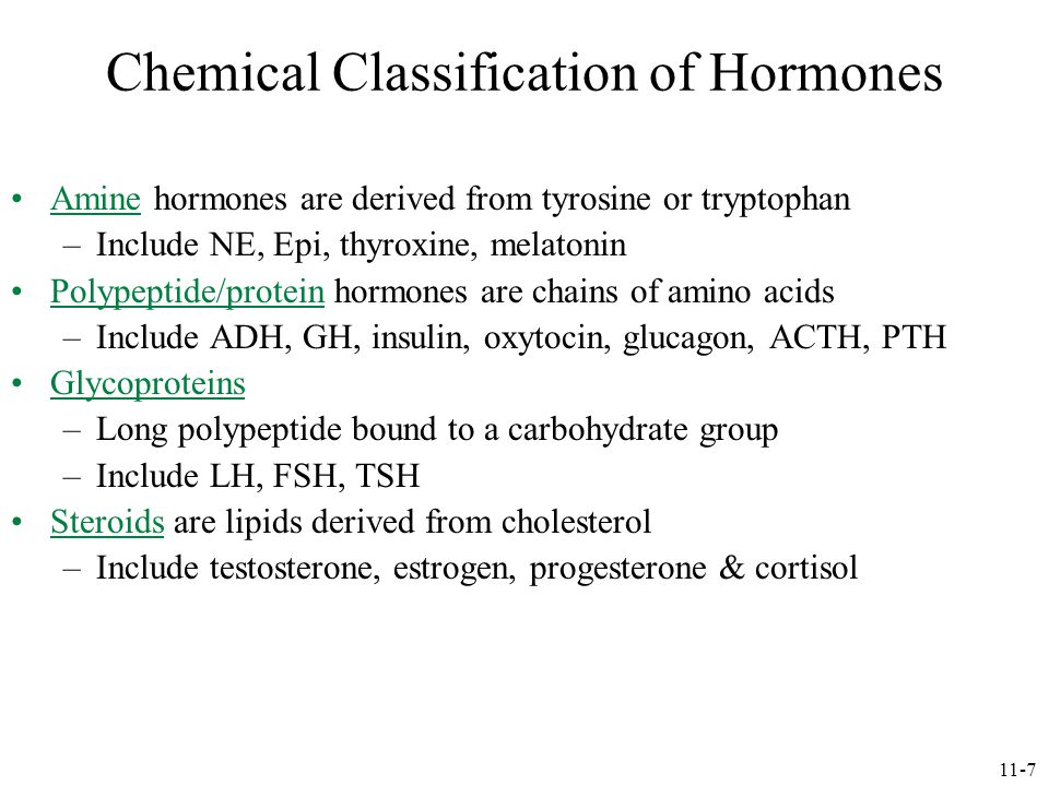 Chemical Classification of Hormones Amine hormones are derived from tyrosine or tryptophan –Include NE, Epi, thyroxine, melatonin Polypeptide/protein hormones are chains of amino acids –Include ADH, GH, insulin, oxytocin, glucagon, ACTH, PTH Glycoproteins –Long polypeptide bound to a carbohydrate group –Include LH, FSH, TSH Steroids are lipids derived from cholesterol –Include testosterone, estrogen, progesterone & cortisol 11-7