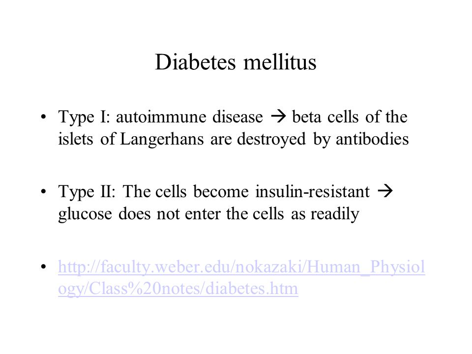 Diabetes mellitus Type I: autoimmune disease  beta cells of the islets of Langerhans are destroyed by antibodies Type II: The cells become insulin-resistant  glucose does not enter the cells as readily http://faculty.weber.edu/nokazaki/Human_Physiol ogy/Class%20notes/diabetes.htmhttp://faculty.weber.edu/nokazaki/Human_Physiol ogy/Class%20notes/diabetes.htm