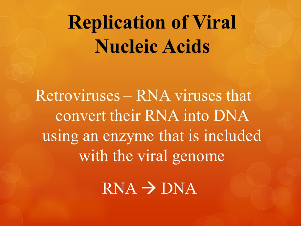 Replication of Viral Nucleic Acids – RNA viruses that convert their RNA into DNA using an enzyme that is included with the viral genome RNA  DNA Retr