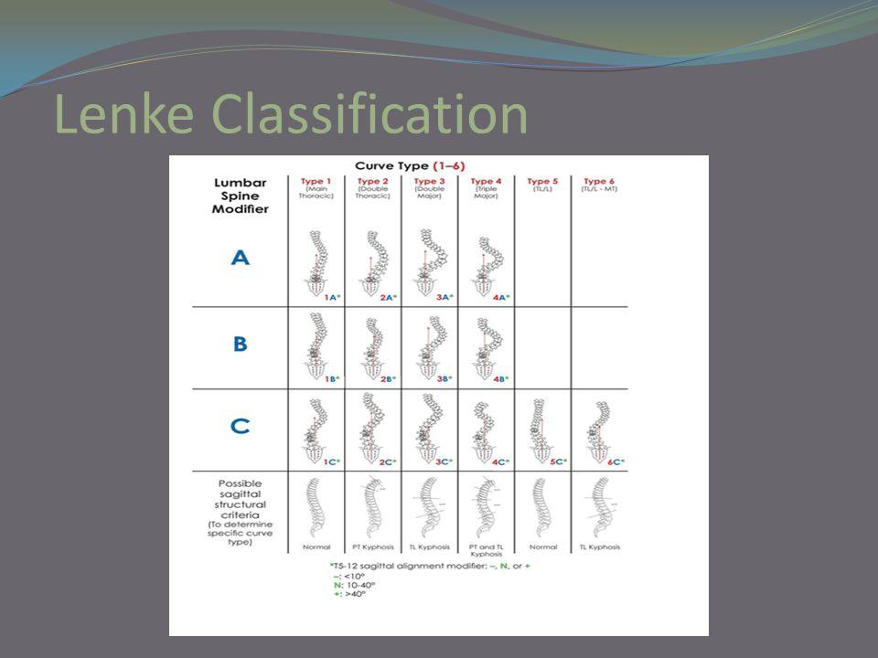 Lenke Classification