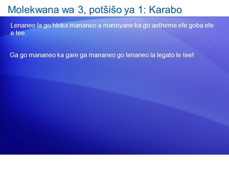 Molekwana wa 3, potšišo ya 1: Karabo Lenaneo la go hloka mananeo a mannyane ka go aetheme efe goba efe e tee.